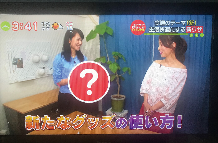 大橋わかよじごじTV出演画像