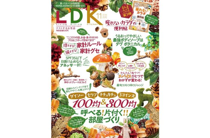 晋遊舎LDK25日2018年11月号表紙