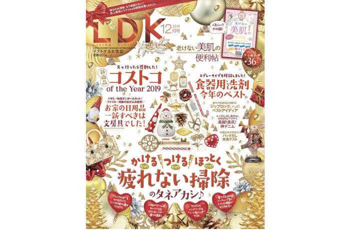 LDK誌上一番ラクなお掃除特集です!|晋遊舎 LDK 2019年12月号